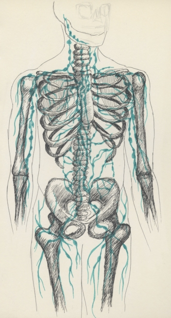 LymphNodeMap